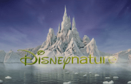 """Disneynature Marks 10 Years with New Video; """"Penguins"""" Opens in 10 Days"""