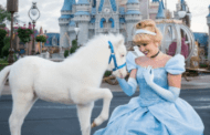Cinderella has a new little pony and it's the cutest thing you will ever see!