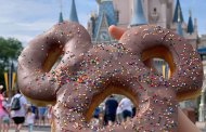 New Mickey Celebration Donut at Magic Kingdom