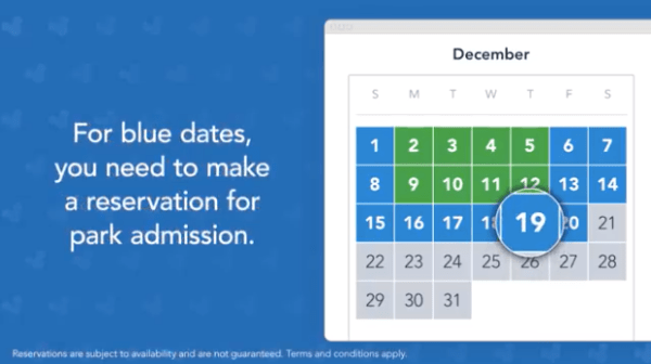 Flex pass blue date calendar