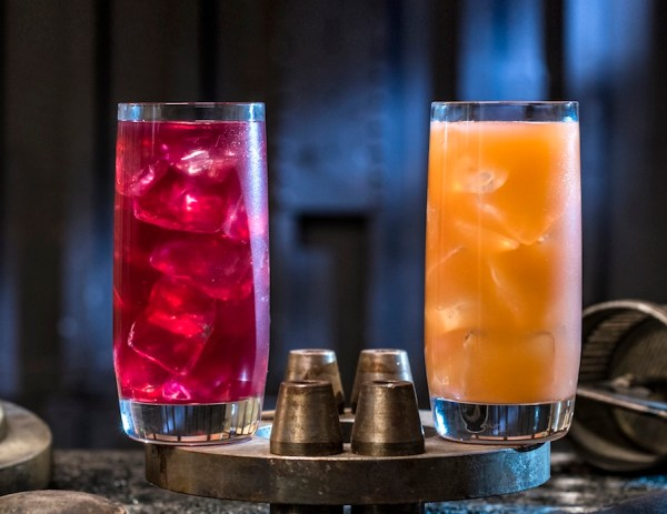 Flavors From Star Wars Galaxy's Edge: Food Guide 5