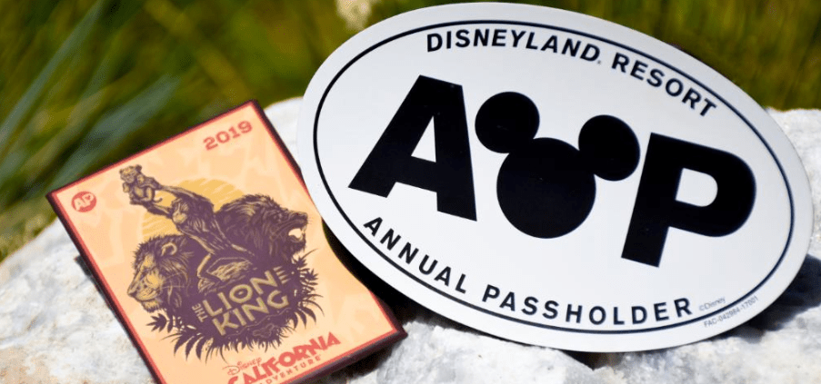 New Disneyland AP Magnets now available