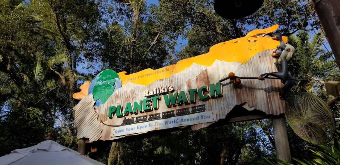Rafiki's Planet Watch is Back July 11th With a New Animation Experience