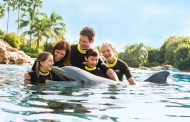 Discovery Cove in Orlando, Offers Florida Residents 30% Savings for a Limited Time!