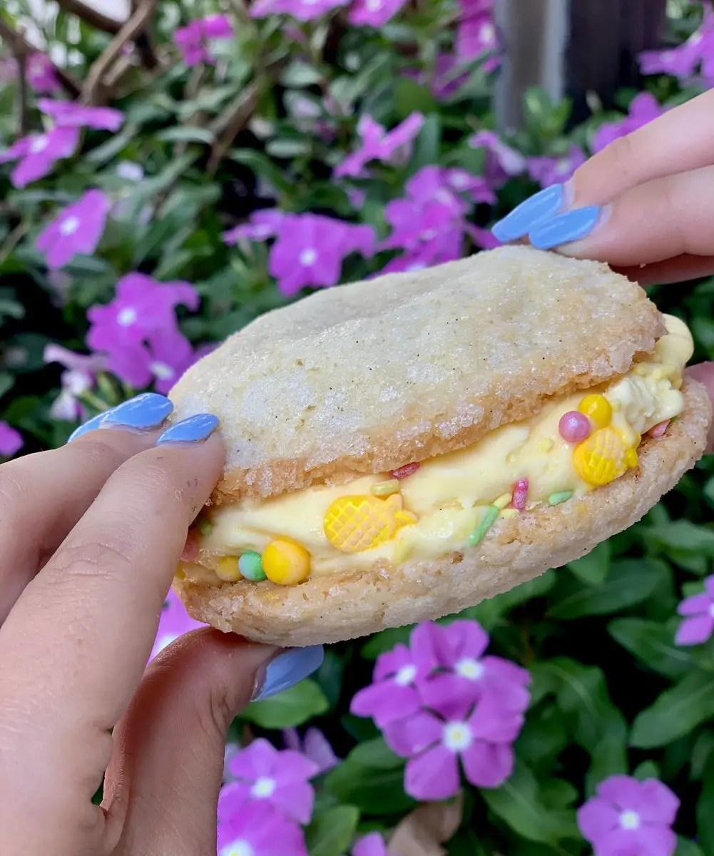 Frozcato Sugar Cookie Sandwich at Wine Bar George