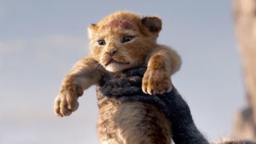'The Lion King' Had The Lions Share At The Box Office This Weekend 2