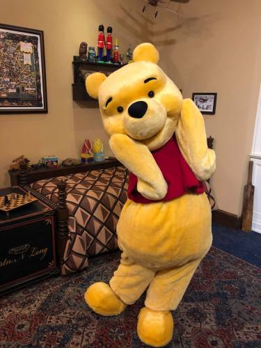 Winnie the Pooh Returns to Epcot 3
