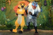 Timon and Rafiki Are Now Meeting Guests Together in Animal Kingdom