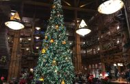 The Christmas Tree at Disney's Wilderness Lodge