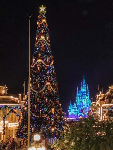 Magic Kingdom is Decked for Christmas 2