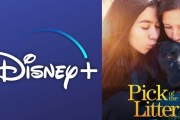 Docuseries 'Pick of the Litter' Coming to Disney+ December 20th