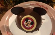Mickey Dome Cake Heats Things Up At Magic Kingdom