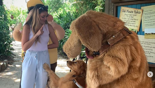 Service Dog Meets Dug at Walt Disney World and Melts Hearts