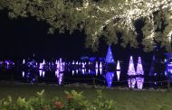 Celebrate The Season With The Christmas Celebration At SeaWorld Orlando