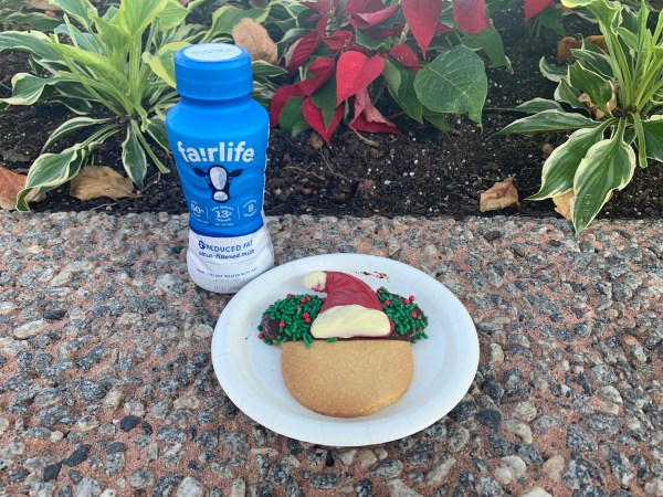 Epcot's Cookie Stroll is back for Festival of the Holidays 9
