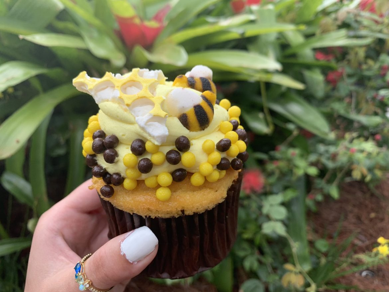 New Seasonal Bee Cupcake At Animal Kingdom
