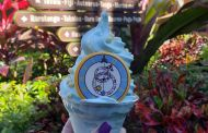 Cinderella Dole Whip At Disney's Polynesian Resort