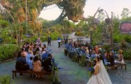 Disney Hosts First Ever Wedding in 'Pandora - The World of Avatar'