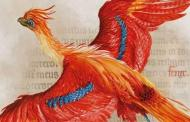 'Harry Potter: A History of Magic' Exhibit Is Available Online For A Limited Time