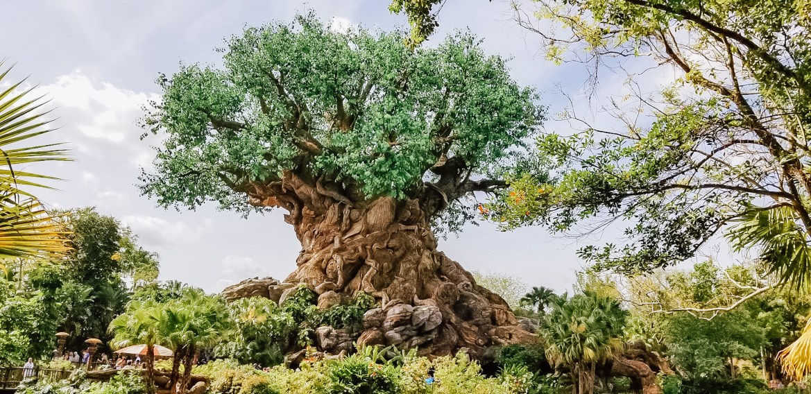 Spend a Virtual Day at Disney's Animal Kingdom