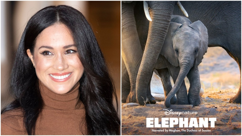 Meghan Markle to narrate Disneynature film Elephant