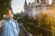 New Disney World Website