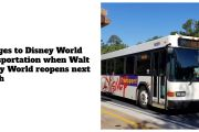 Changes to Disney World Transportation When Walt Disney World Opens Next Month