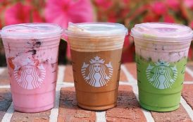 Starbucks Summer Refresh: New Summer Specialty Drinks at Starbucks in Disney Springs