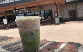 New Picnic Punch now available at Starbucks in Disney Springs