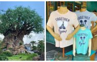 Disney World Celebrates the Reopening with specialty merchandise