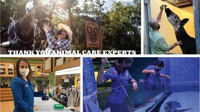 Disney celebrates animal care at Walt Disney World