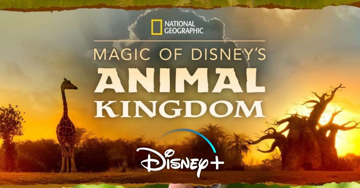'Magic of Disney's Animal Kingdom' from National Geographic to Premiere on Disney+ This Fall