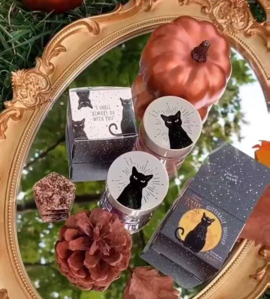 Wicked New Hocus Pocus ColourPop Makeup Collection Coming Soon 2