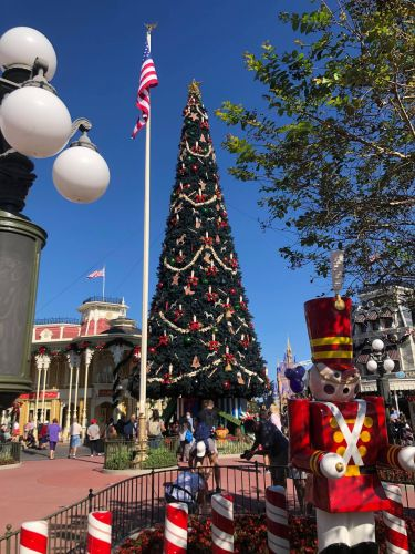 It's beginning to look a lot like Christmas at the Magic Kingdom 3