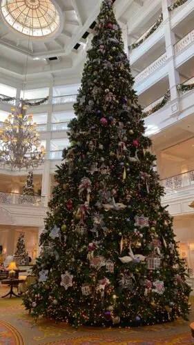 Grand Floridian Christmas Tree Comes Home for the Holidays 1