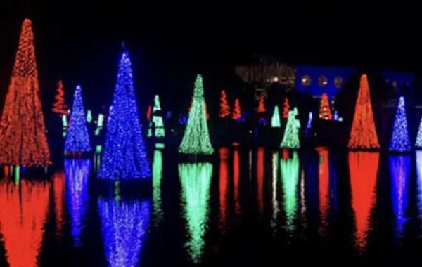 Modified Christmas Celebration at SeaWorld Orlando 1