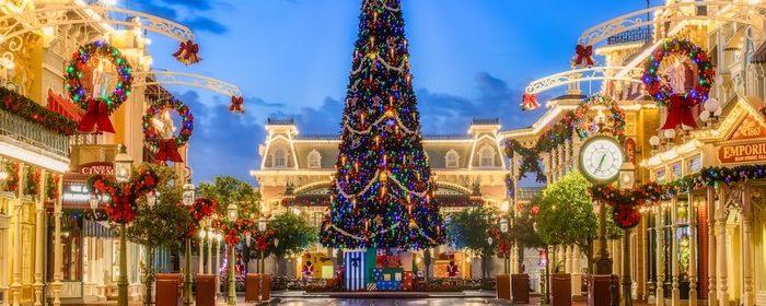 Watch as Disney World transforms from Halloween to Christmas!