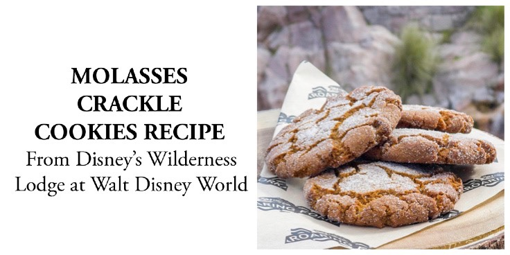 Molasses Crackle Cookies Recipe From Disney's Wilderness Lodge Bakery!