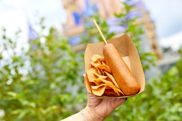 New and Returning Fan Favorite Food Items now available at the Magic Kingdom 2