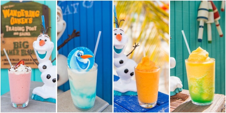 Disney Cruise Line Frozen Blended Drink Recipes!