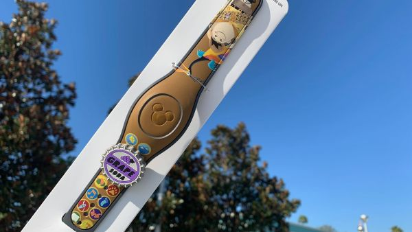 UP MagicBand