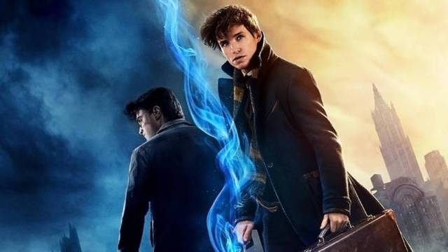 Harry Potter and Newt Scamander from the Wizarding World