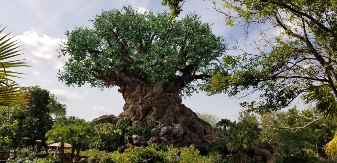 It's Tough to be a Bug! is Closed for Quick Refurbishment in Disney's Animal Kingdom