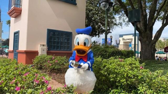 Donald Duck Hollywood Studios