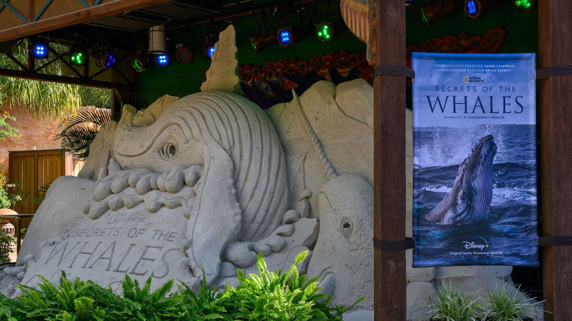 'Secrets of the Whales' Sand Sculpture Splashes into Disney's Animal Kingdom