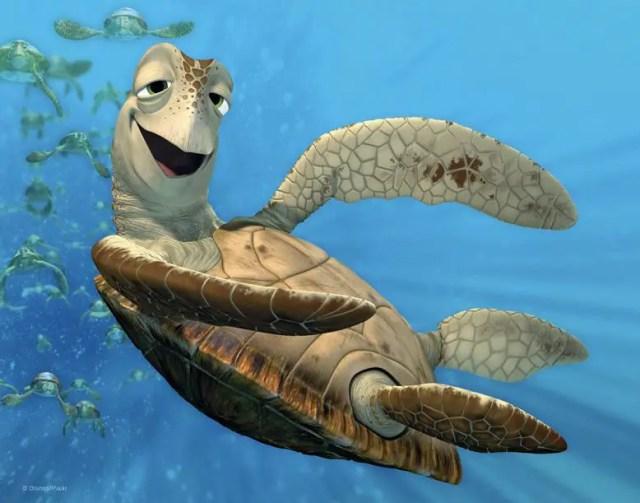 Crush Finding Nemo Turtle