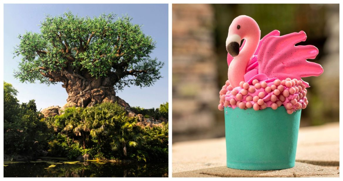 Must try this Flamingo Cupcake from Disney's Animal Kingdom