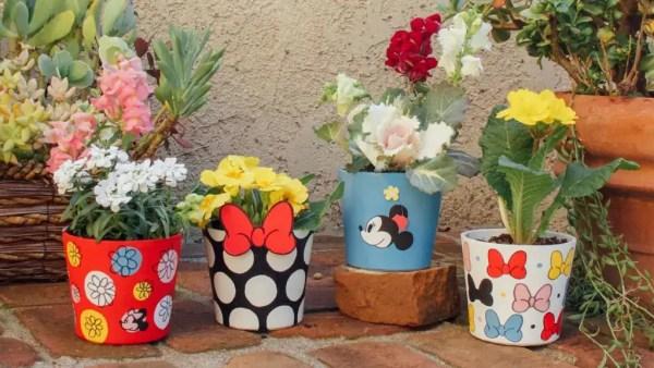 Minnie Mouse Garden