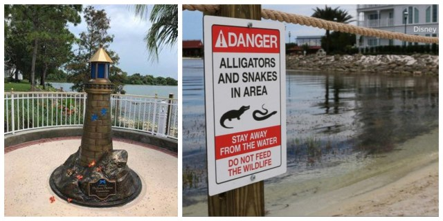 Disney has removed 250 Alligators from Disney World since Child's Death in 2016 1
