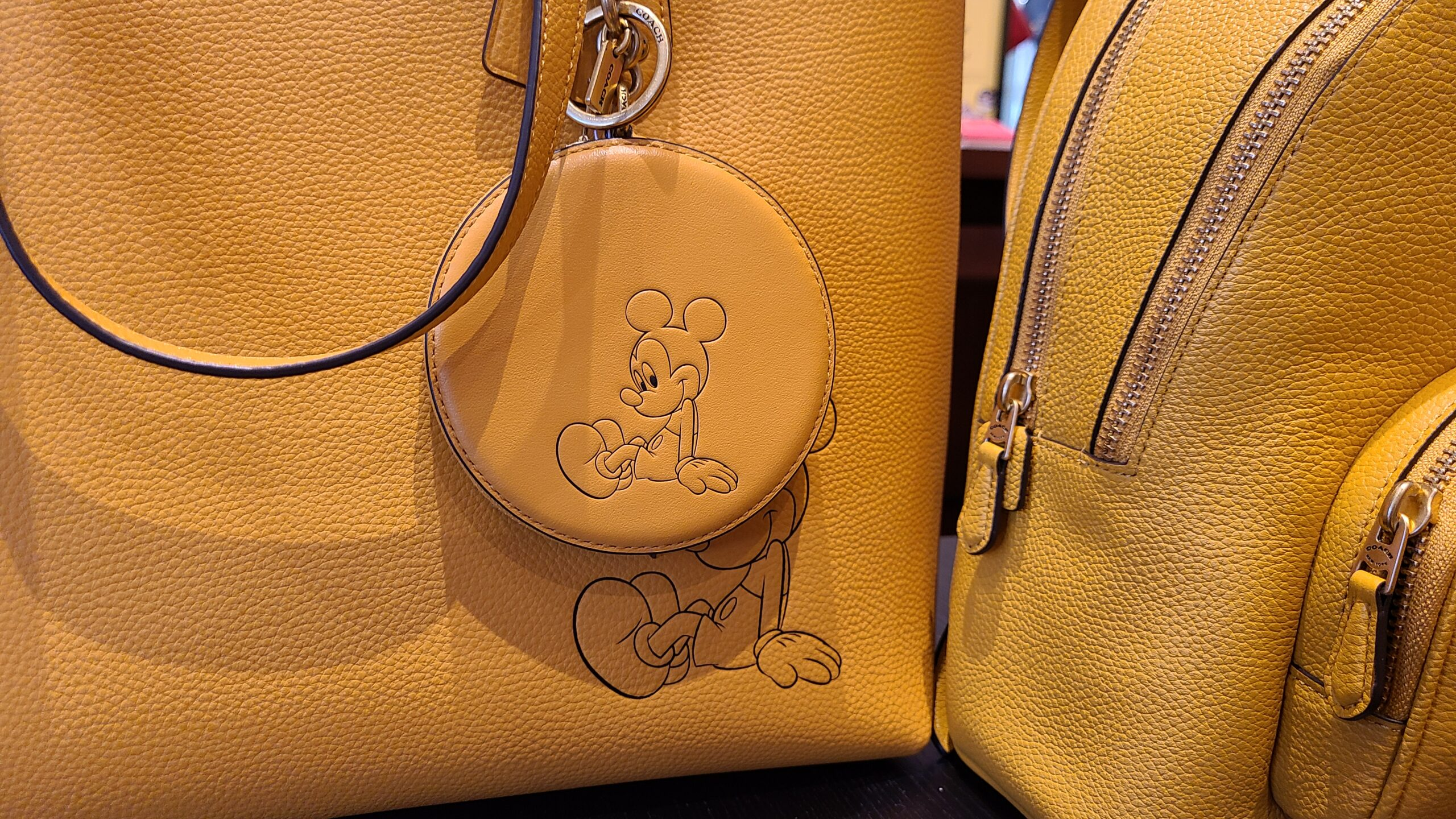New Mickey & Minnie Coach Collection spotted at Disney Springs 12